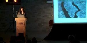 Big Ideas In Art and Culture: Mary Mattingly